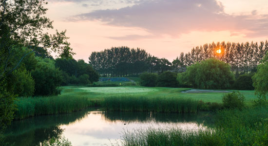 Chichester-Golf club | Sussex Golf