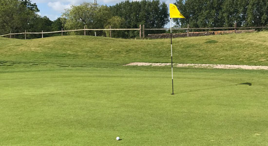 Horsham golf and fitness-hole-7 | Sussex Golf