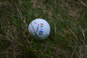 Sussex golf - Sunnigndal Foursomes Lamb and Penge custom ball